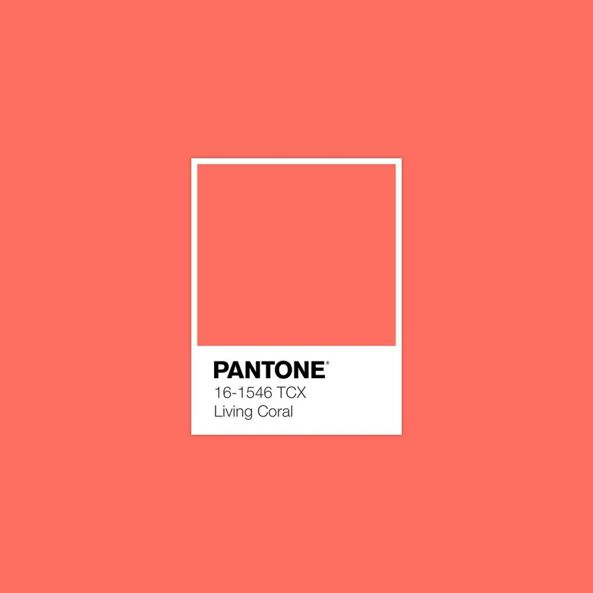 Pantone Color Of The Year: Introduce Living Coral Into Your Home Decor living coral Pantone Color Of The Year: Introduce Living Coral Into Your Home Decor Pantone Color Of The Year Introduce Living Coral Into Your Home Decor 1